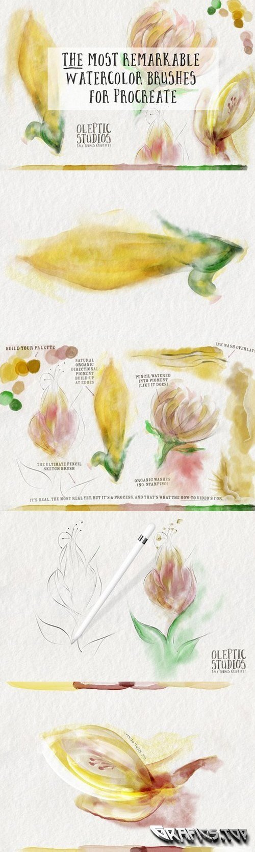 Best Watercolor Brushes � Procreate 1393456