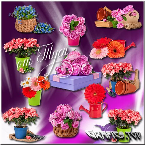 Poetry of flower beauty - Clipart