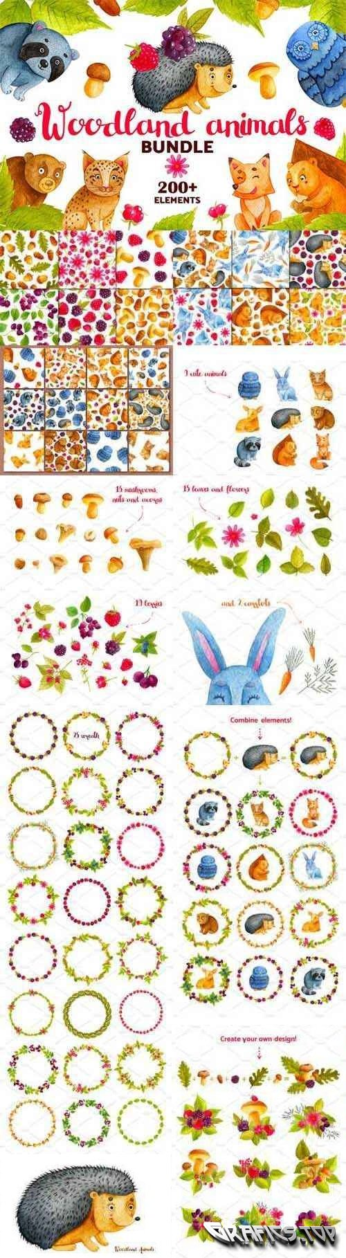 Woodland Animals. Watercolor Bundle - 2052332