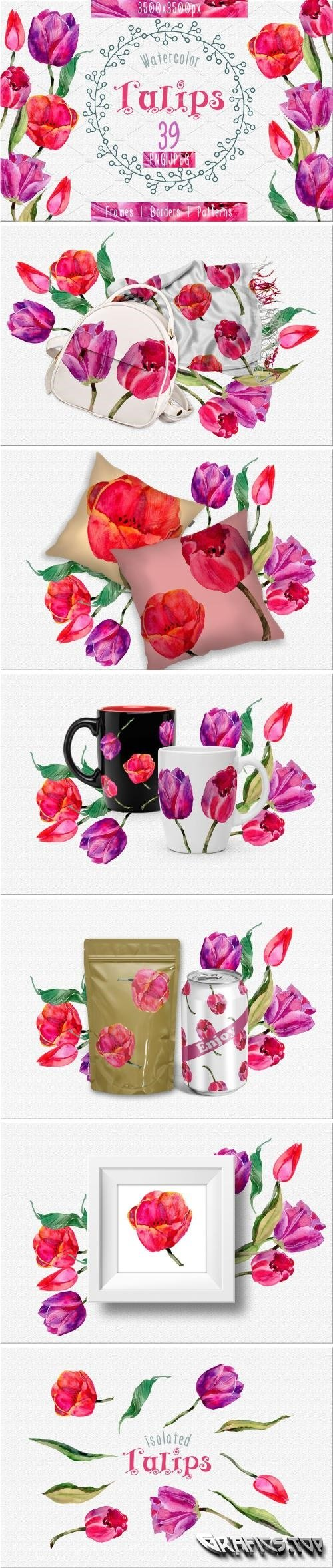Tulips PNG watercolor flower set - 2392711