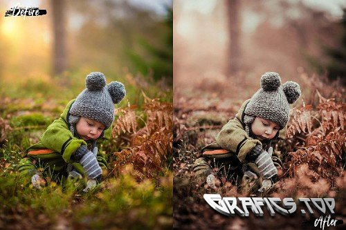 5 Dreamy Autumn Photoshop Actions, ACR and LUT presets - 362464